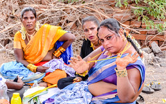 Trans Beauties (Anita Sathiam's Click) Tags: anitas anitasathiam rural worship woman warmness work women expressive education enjoyment eyes expression eye earth traditional tamilnadu travel tamilan together temple templesof templesoftamilnadu koovagam koovagam2017 koovathur templesofindia respect unconditional culture indian innocent independent indianphotofraphy indialife india photography place people potrait love life lifeinidia lady light lighter ladys kovil kungamaum indiaclickindia festival family friends favaorite daughter stree celebration village visit villagelife vikudan villupuram villagegod vatkam v ngc motherindia