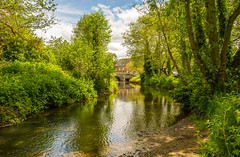 The River Clun & A Glimpse Clun Bridge (williamrandle) Tags: riverclun clun southshropshire uk england spring 2017 river water riverbank trees green bluesky clouds pretty serene picturesque sunlight shade shadows landscape reflections outdoor nikon d7100 sigma1835f18art