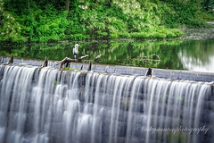 Heron on Waterfall (mgstanton) Tags: animal framingham bird heron water waterfall sonyalpha smoothreflection sonycameraapp