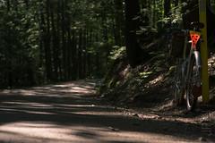 #roadslikethese (koperajoe) Tags: cyclotourisme dirtroad gravel somagr westernmassachusetts dappledlight randonneur soma sunlight backroad 650b newengland velo