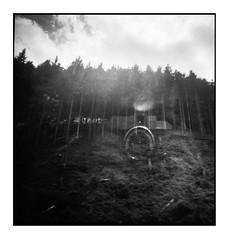 (bakmak71) Tags: dianamini analog swfilm agfaapx100 toycamera plasticam adonal scanvomnegativ blackforest schwarzwald feldberg feldsee