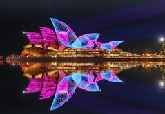 Opera Jelly Reflection (merbert2012) Tags: red vividsydney vivid sydneyharbour sydneyoperahouse lightshow reflection digitalmanipulation jellyfish longexposure nikond800 fun cityscape city