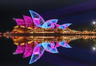 Opera Jelly Reflection