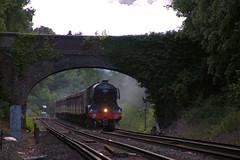 462-60103-FlFlying Scotsman near Virginia WateryingScotsman_VirginiaWater02 (Colin Weaver) Tags: steam flyingscotsman virginiawater railway railroad loco locomotive heritage