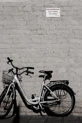 JPR_9034 (jp-03) Tags: appoggiare bici muro divieto interdit vélo bicyclette forbidden cycle mur wall chioggia jp03