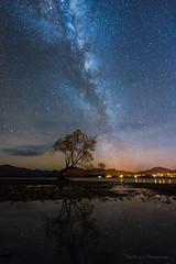 Lake Wanaka (Wei, Willa) Tags: newzealand wanaka lakewanaka milkyway nightscapes
