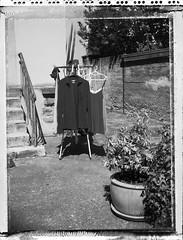 linge - arrière cour (JJ_REY) Tags: linge arrièrecour laundry backyard bw largeformat 4x5 polaroid type55 negative toyofield 45a rodenstock sironarn 150mmf56 epson colmar alsace france