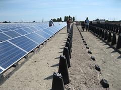 Impianto fotovoltaico nell'ex discarica del Comune di Goro (1)