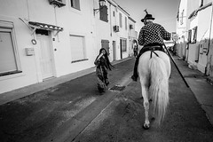Barefeet gipsy (Nomokrom) Tags: horse gipsy barefeet black sarah saint camargue france blackwhite nikon bw