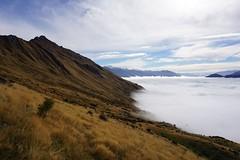 Der Blick ins Tal vom Roys Peak aus. Zum Mittag haben sich die Wolken immer noch nicht verzogen. Wir hoffen das beste :)
