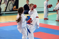 "pervenstvo-asbestovskogo-gorodskogo-okruga-po-karate-2017-3 • <a style=""font-size:0.8em;"" href=""http://www.flickr.com/photos/146591305@N08/34160867714/"" target=""_blank"">View on Flickr</a>"