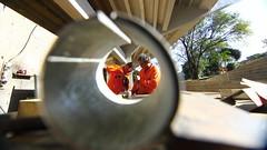 Teatrao-51claudio (Prefeitura de São José dos Campos) Tags: obrateatrão funcionáriourbam emprego trabalhador pedreiro construção claudiovieira