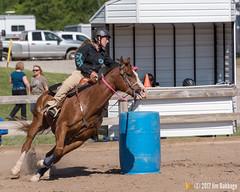 JBC_8934.jpg (Jim Babbage) Tags: krahc annualshow appaloosa horses bethany palmer
