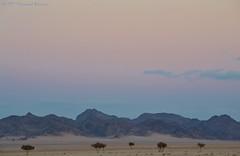 Mountains جبال (Mohammed Almuzaini) Tags: وادي جبال بر valley landscape acacia colorful sky mountains trees desert