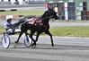 HP SISSY tr-r9-110617 (Claude Hudon) Tags: course race horse winner track harnais ambleur cheveaux cheval troisrivierres