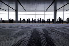 sdqH_170620_A (clavius_tma-1) Tags: sd quattro h sdqh sigma 1224mm f4 dg 1224mmf4dghsm art 羽田空港第2旅客ターミナル haneda airport observationdeck 展望デッキ floor carpet pillar ceiling window