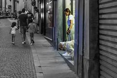 coraggio, entriamo nel bianco e nero! (Clay Bass) Tags: 12800 nikon saluzzo d750 dog people selective street woman