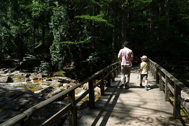 マイナスイオンを感じながら 川沿いの遊歩道を歩く|赤沢森林資料館