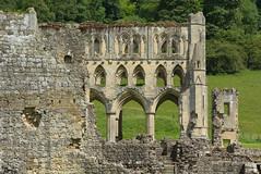 A Pocket Full Of Rye (Feversham Media) Tags: rievaulxabbey rievaulx ryedale yorkshire northyorkshire northyorkmoors abbeys englishheritage northyorkmoorsnationalpark cistercians helmsley
