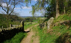 Near the village of Birchover (Blue Sky Pix) Tags: old gate countryside view derbyshire peak district national park spring green drystonewall england pentax