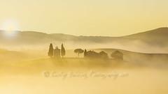 Capella Vitaleta, misty sunrise (pixellesley) Tags: italy tuscany capellavitaleta chapel sunrise mist golden glow silhouette farmhouse trees landscape lesleygooding