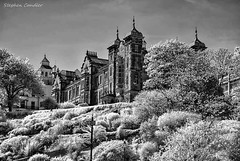 Council Offices (Light+Shade [spcandler.zenfolio.com]) Tags: ©stephencandlerphotography spcandler stephencandlerphotography httpspcandlerzenfoliocom stephencandler england uk lightshade infrared blackwhite monochrome scarborough yorkshire northyorkshire gardens buildings counciloffices trees bushes geotagged