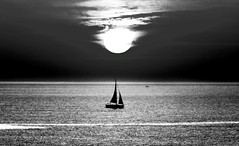 Sailing at sunset - Tel-Aviv beach (Lior. L) Tags: sailingatsunsettelavivbeach sailing sunset telaviv beach blackandwhite monochrome sailboat silhouette sky nature travel israel