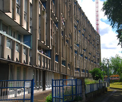 Urban walk 20 May 2017: Lewisham to Mile End 55 (neil mp) Tags: london towerhamlets poplar e14 robinhoodgardens alisonandpetersmithson smithsons architecture brutalism modernism concrete bétonbrut c20 twentiethcenturysociety housing