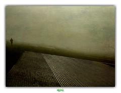 RUN RUN RUN MY BROTHER (régisa) Tags: digue leffrinckoucke malo malolesbains dunkirk dunkerque andalsothetrees mist brume brouillard runner coureur diguenicolasii aoi elitegalleryaoi bestcapturesaoi