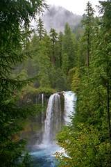 Sept 5, 2013 Koosah Falls - McKenzie River - Hwy 126 (1) (Dale Gerdes) Tags: oregon koosah falls waterfall waterfalls