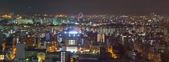 Osaka Tower View 11...