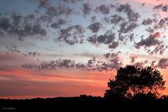 CEG4357 (Fransang) Tags: noordwijk sunset zonsondergang