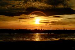 Am Rhein I (st.weber71) Tags: sonne spiegelung sonnenuntergang ruhrgebiet ruhrpott rheinland rhein romantik rheinufer wolken wasser wasserspiegelung himmel nrw niederrhein nikon germany d800 deutschland