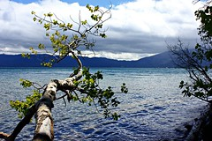 Lake Tahoe (Eduardo Ruiz M.) Tags: tahoe nevada lake outdoor nature lago agua water landscape alpine mountain