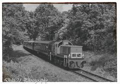 20170519-IMG_8216-Edit (deltic21) Tags: severnvalley severn valley railway preservation preserved svr br british britishrail rail gala diesel dieselgala canon teddybear hydraulic kidderminster power