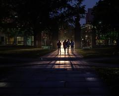 Through the Gate (Dalliance with Light (Andy Farmer)) Tags: nj night fitzrandolphgate princetonuniversity campus students street princeton newjersey unitedstates us silhouette