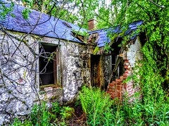 ABANDONED COTTAGE, DUMFRIESSHIRE (pajacksonartist) Tags: urbex old abandoned cottage dumfriesshire scotland drumlanrig castle derelict home house ruin ruined decay