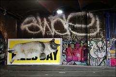 Swae (Alex Ellison) Tags: swae se tag eastlondon urban graffiti graff boobs shoreditch