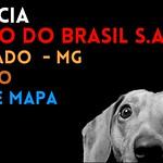 MACHADO /MG ENDEREÇO DA AGÊNCIA MACHADO  DO BANCO BANCO DO BRASIL S.A. thumbnail
