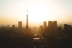 「黄金時」 (トミーコンリン Tommy Conlin) Tags: tokyo japan tokyoworldtradecenter sony a7s sonya7s 2870 dusk cityscape goldenhour tokyotower