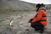 Chinstrap Penguin visits Debbie (Scott Ableman) Tags: shetlandislands baileyhead chinstrappenguins chinstrappenguin chinstrap penguin nationalgeographicexpeditions lindbladexpeditions nationalgeographicorion antarctica parkas orange orangeparka