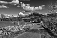 The road to Schiehallion (D-j-L) Tags: kinlochrannoch scotland unitedkingdom gb schiehallion mountain highlands perthshire road view landscape clouds cloudy sky blackandwhite blackwhite b7w monochrome field sheep pentax k5 pentaxk5