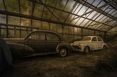 DSC_6133 (Foto-Runner) Tags: urbex lost decay abandonné car auto voitures ancêtres épave