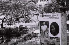 Angoon's Garden - Thong Lo, Bangkok (jcbkk1956) Tags: angoonsgarden garden blackandwhite mono 45mmf28 carlzeiss sign pan100 ilford 167mt contax manualfocus analog 35mm film thonglo thailand bangkok worldtrekker