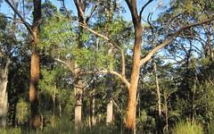 L1a Bruxner Hwy, Tabulam NSW