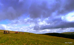 High St & Nan Bield Pass (48) (Carl and Sian) Tags: lakes lakedistrict carlandsian singletrack sian cumbria cycling bikes mountainbiking mtb alpine orangemountainbikes orange orangefive segment adventurebiking outdoors