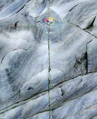 Up Arrow, Porth Meudwy » (CactusD) Tags: porthmeudwy porth meudwy aberdaron textures landscape wales nikon d800e tilt shift tiltshift movements pce 24mmf35pce 24pce 24mm f35 fx texture uk gwynedd unitedkingdom gb seaside sea rock united kingdom greatbritain great britain uwchmynydd arrow abstract abstraction rockpool northwales