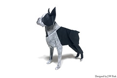 Boston Terrier (18575) Tags: origami