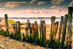 Sinah Warren, Hayling Island (Laura Drury) Tags: sea beach groin wood hampshire haylingisland