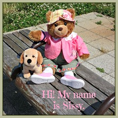The Adventures of Sissy and Noah (her Bloodhound male puppy) are just beginning. (martian cat) Tags: ribbet macro teddybearsinjapan© ©martiancatinjapan ©teddybearsinjapan allrightsreserved© teddybearsinjapan teddybearsinjapan☺ ☺teddybearsinjapan ©allrightsreserved martiancatinjapan© teddybear teddybears collectibles hobbies ☺dogsandpuppiesinjapan ©dogsandpuppiesinjapan dogsandpuppiesinjapan© dogsandpuppiesinjapan ©puppydogsinjapan puppydogsinjapan© puppydogsinjapan ☺allrightsreserved allrightsreserved motivationalposter motivational caption captioncollection ☺martiancatinjapan martiancat martiancat© ©martiancat martiancatinjapan creativity